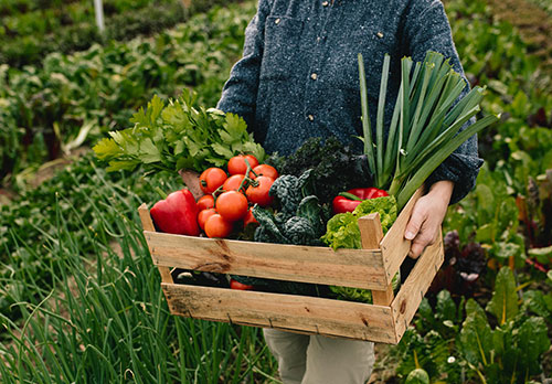 Som una xarxa de supermercats familiars basats en la qualitat dels nostres productes, prioritzant la comoditat i proximitat amb els nostres consumidors.